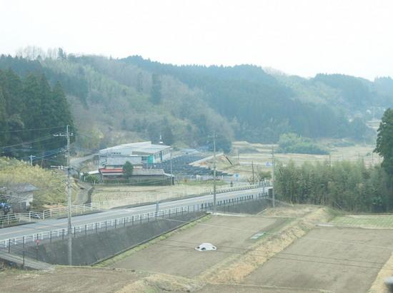 P2152459.jpg